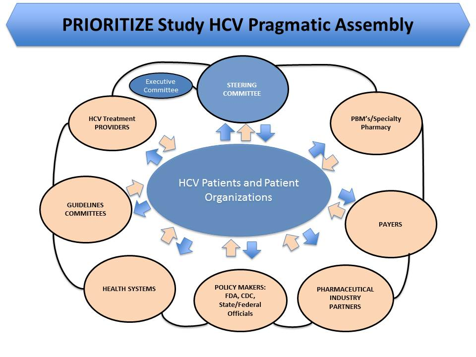 HCV Pragmatic Assembly 2